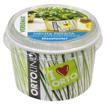 Ortolino – Mäta - polypropylénová nádobka, kokosový substrát, rýchlovzchádzajúce osivo
