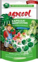 Hnojivo - kapsuly - Capsules For House Plants, 70g, 18 ks