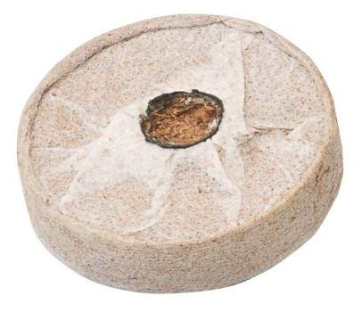 Substrát - VERDEMAX - tablety z kokosových vlákien obalené geotextíliou - 12 ks