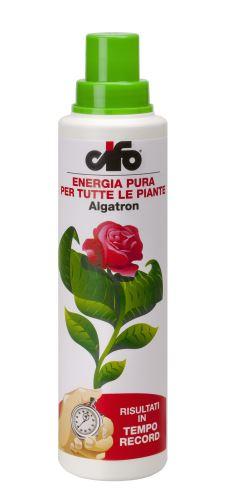 CIFO Algatron