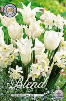 Blend Tulipa/Narcissus White Valley x20     (12/14)