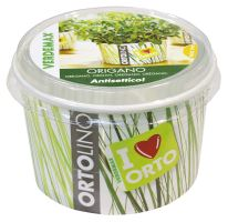 Ortolino - Oregano - VERDEMAX - nádobka, kokosový substrát, rýchlovzchádzajúce osivo