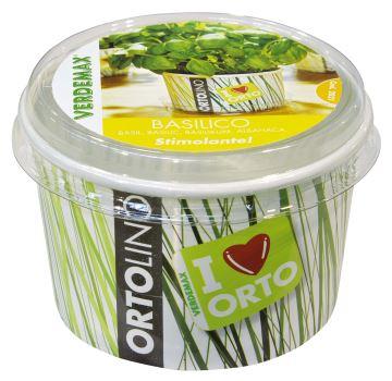 Ortolino - Bazalka - VERDEMAX - nádobka, kokosový substrát, rýchlovzchádzajúce osivo