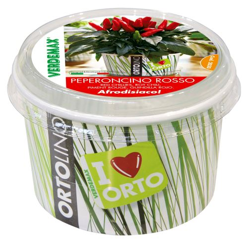 Ortolino - VERDEMAX - red chillie