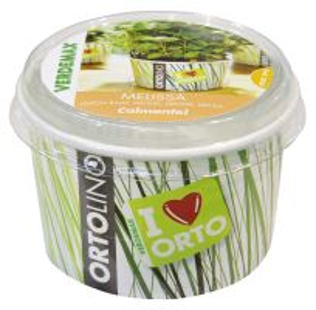 Ortolino - Melisa - VERDEMAX - nádobka, kokosový substrát,rýchlovzchádzajúce osivo