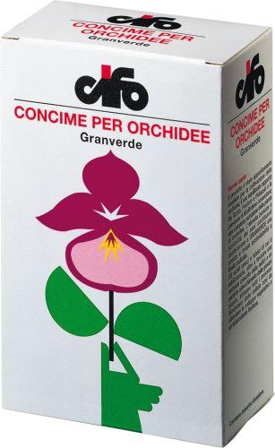 CIFO Granverde Orchidee