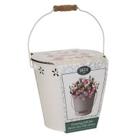 BEES Seeds Seed Bucket set - Sweet Pea-G PLANTS