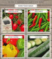BEES Speedy Seed 4in1 Starter Kits - Patio Vegetables-G PLANTS