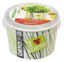 Ortolino - Koriander - VERDEMAX - nádobka, kokosový substrát,rýchlovzchádzajúce osivo