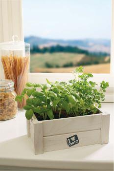 Easyorto – Bazalka/petržlen; Nádoba na pestovanie zeleniny a byliniek, pre interiér i exte