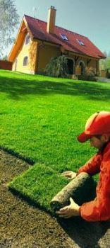 Rolovaný trávnik