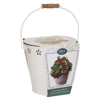 BEES Seeds Seed Bucket set - Kapucínka